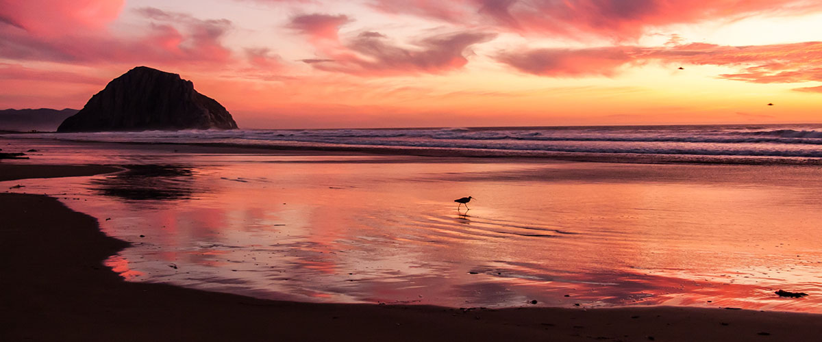 beautiful orange-red sky as sun sets over the ocean, view from the beach - resort trade, hospitality, hotel, travel, vacation - improves sales with better storytelling