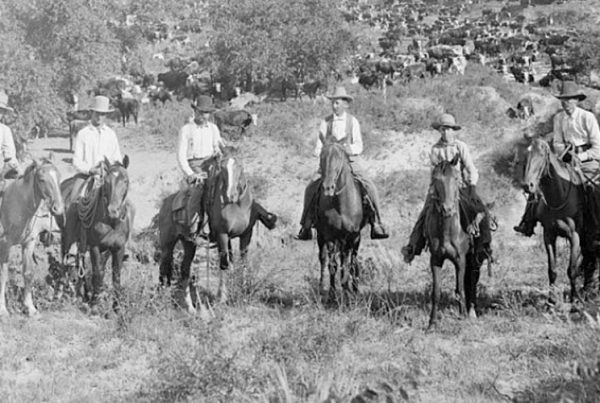 cowboy slang, lingo, jargon, black and white photograph from circa 1901 of cowboys sitting on horses looking directly into camera