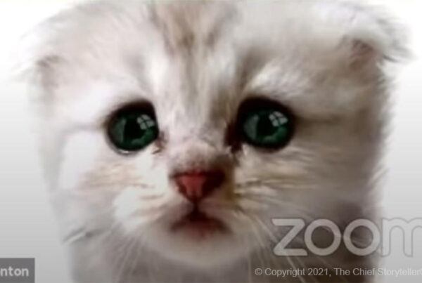 customized cat background with talking cat zoom filter / avatar